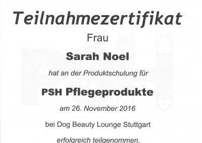 Zertifikate_Seite_22